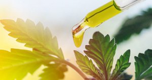 CBD Oil: Nature's Anti-Aging Secret Weapon